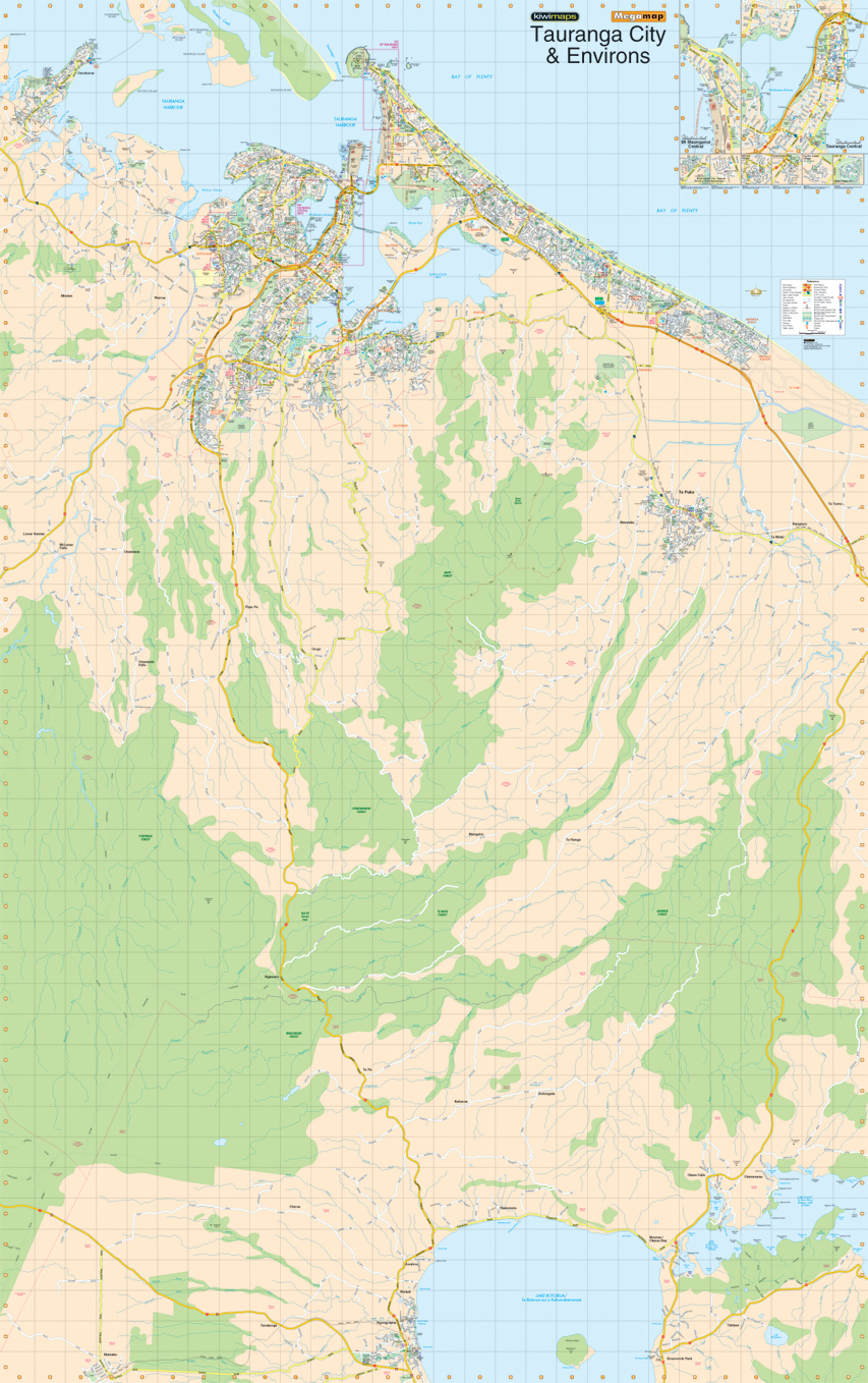 Kiwmaps new zealands best selling maps auckland 135 000 scale 1084 x 1764 mm gumiabroncs Gallery